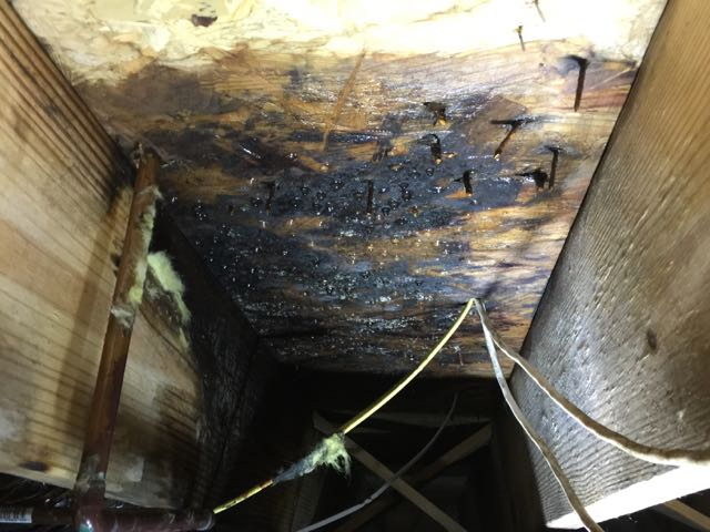 image of crawl space foundation repair - bad subfloor
