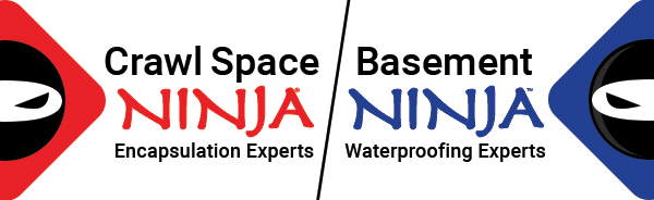 Logo for Crawl Space Ninja and Basement Ninja