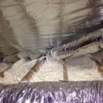 Picture of Radiant barrier and spray foam insulation